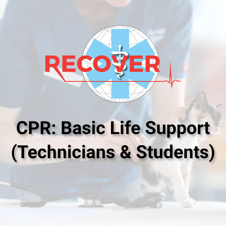 CPR: Basic Life Support (Online -Technicians And Students)
