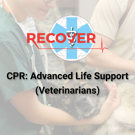 CPR: Advanced Life Support (Online)