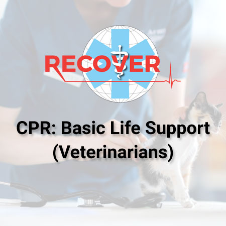 CPR: Basic Life Support (Online)