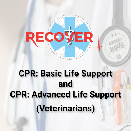 CPR: Basic And Advanced Life Support Package (DVM)