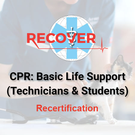 CPR Recertification: Basic Life Support (VT/VN, Students)