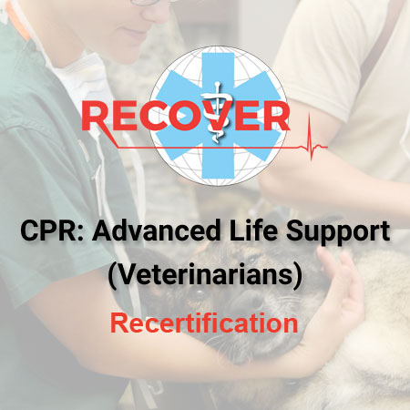CPR Recertification: Advanced Life Support (Veterinarian)