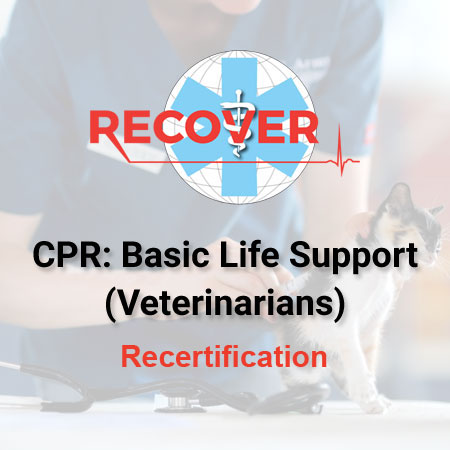 CPR Recertification: Basic Life Support (Veterinarian)