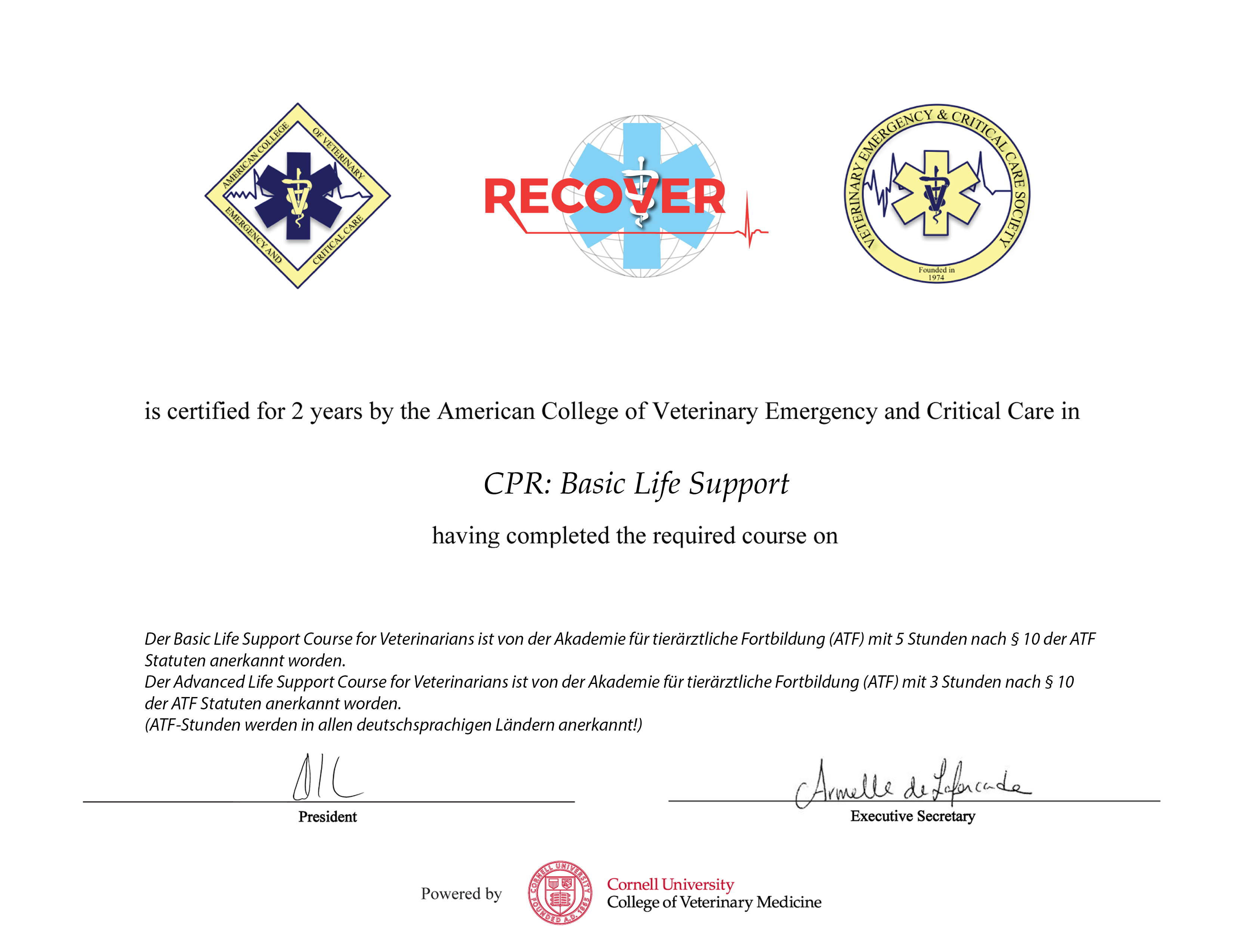 CPR: Basic Life Support (Germany ATF)