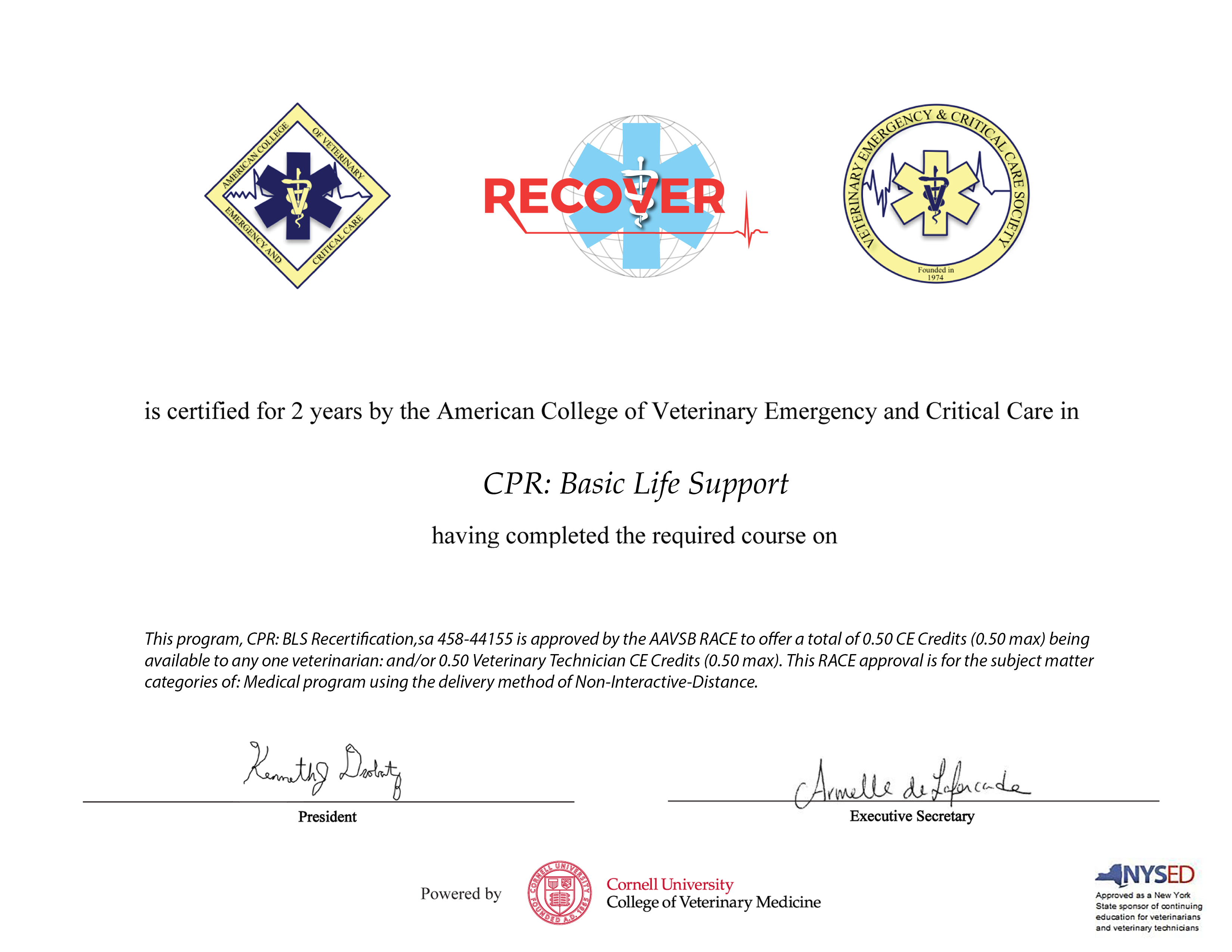 CPR: Basic Life Support Recertification