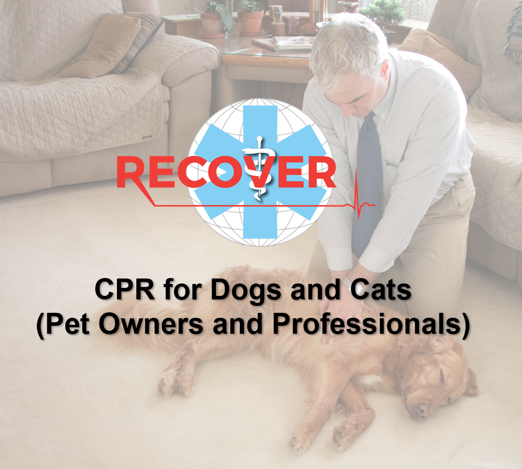 RECOVER CPR For Pets (Online)